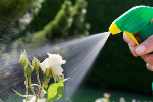 Insect Repellents for Flowers