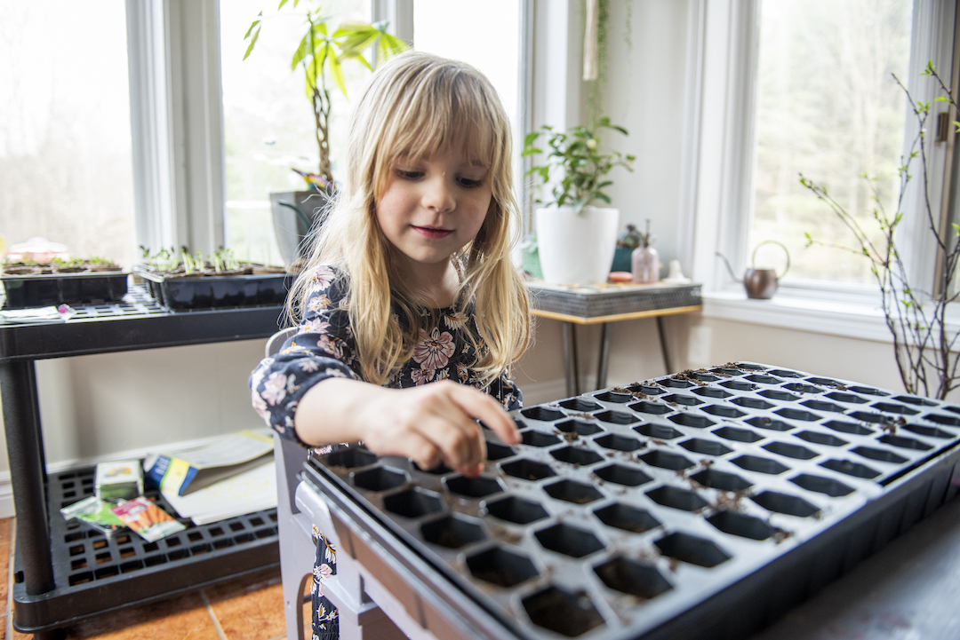 The Time Has Come to Start Seeding Your Plants Indoors
